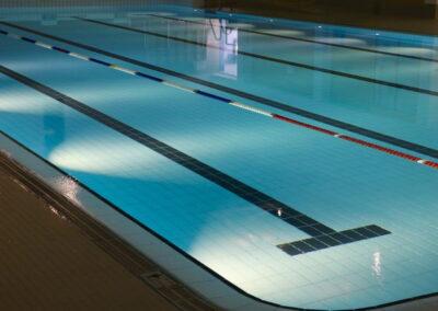 Schwimmbadreinigung